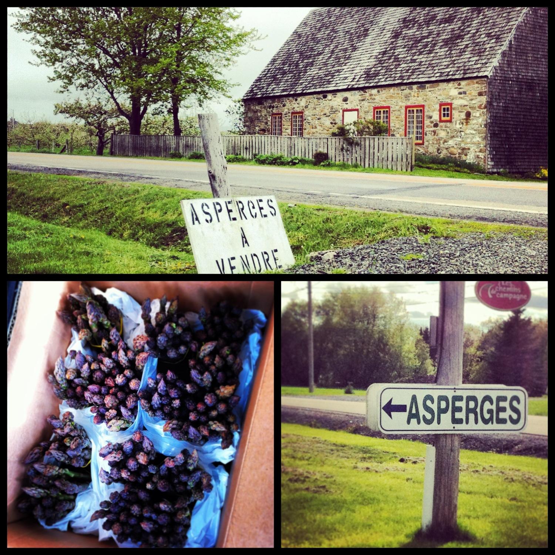 abondance d'asperges et paysages de campagne