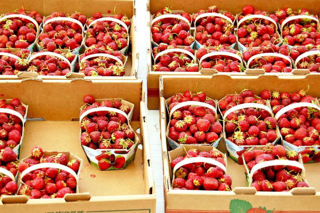 Cormier-fraises