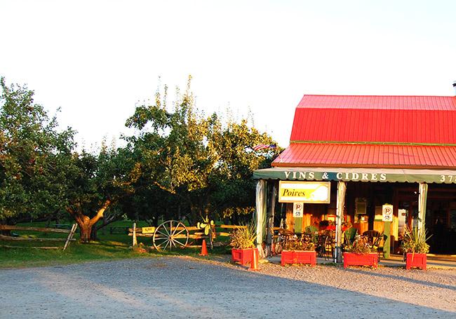 Domaine La source à Marguerite, vin, cidres