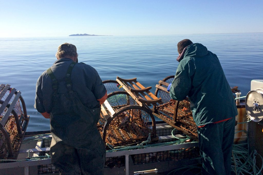 Pêche au homard Îles-de-la-Madeleine