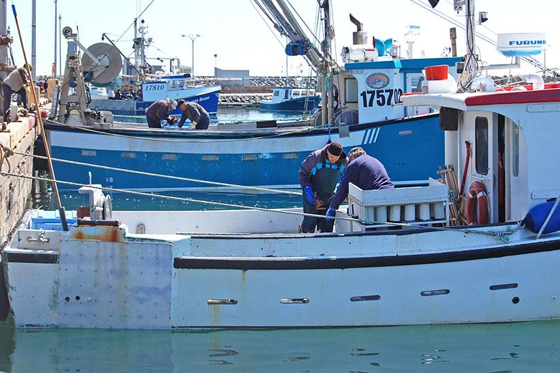 Retour de pêche au homard
