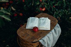 10 livres pour nourrir sa culture alimentaire (2017)