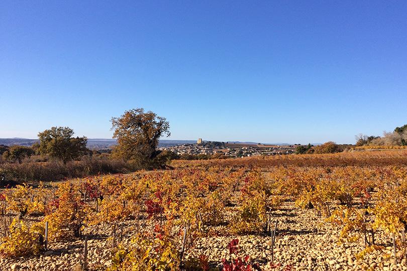 Plein air gourmand dans les vignes de Châteauneuf-du-Pape
